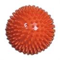 Изображение Мяч для фитнеса L 0109